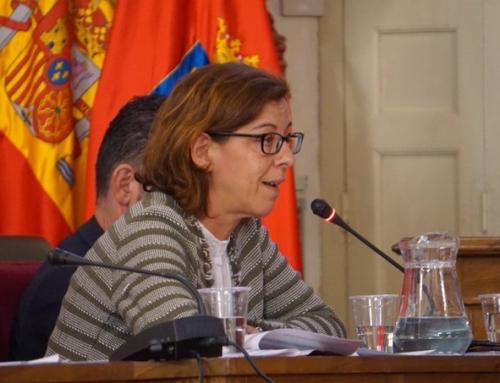 El PSOE recuerda a Cs que no se puede asignar contratos a dedo a empresas de Alcalá